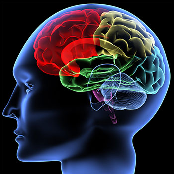 Cognitive Behavioral Therapy or CBT